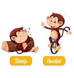 Opposite words with sleep and awake vector