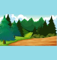 Outdoor wood background scene vector