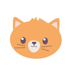pet cat face feline cartoon isolated icon on white vector image