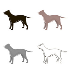 pitbull icon in cartoon style for web vector image
