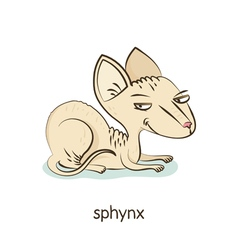 Sphynx Cat character isolated on white vector