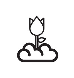 Thin line flower icon vector