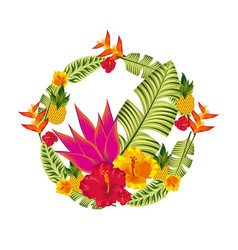 tropical flowers design vector image