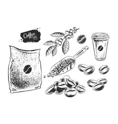 Black and white set coffee beans vector