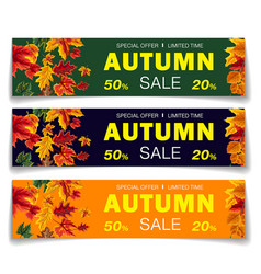 colorful realistic coupons for seasonal sale vector image