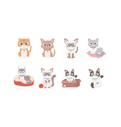 cute dog and cats different cartoon character vector image