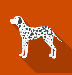 dalmatian icon in flat style for web vector image