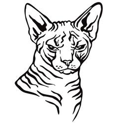 Decorative portrait cat 3 vector