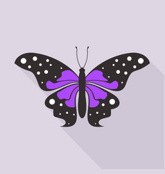 flat butterfly3 vector image