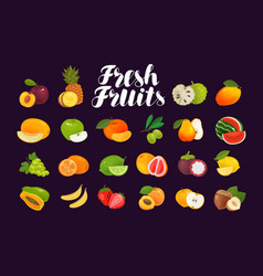 Fruits and berries set icons food vector