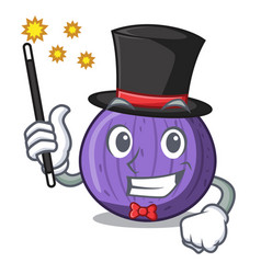 Magician tasty fig fruit isolated on mascot vector