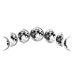 moon phases planets in solar system astrology vector image