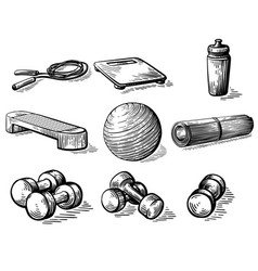 sketch hand drawn collection elements vector image