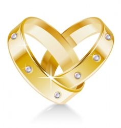 two wedding rings shaped heart vector image