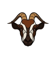 Goat head image on white background vector image vector image