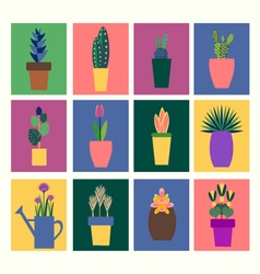 collection of tropical plants in pot vector image