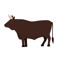 Color image with brown bull vector