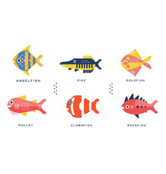 Freshwater and ocean fishes collection angelfish vector