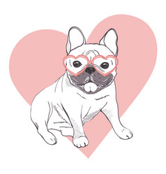 Funny puppies of french bulldog funny french vector
