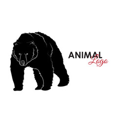grizzly bear icon logo symbol vector image