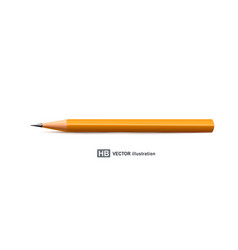 realistic pencil isolated on white vector image