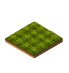 Soccer Grass Isometric vector