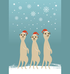 three cute meerkats in red hats vector image