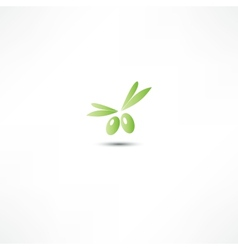 Olive icon vector image