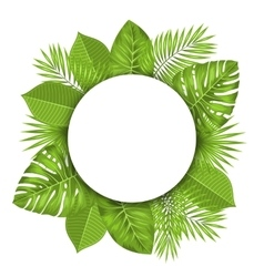 Clean Card with Text Space and Green Tropical vector image
