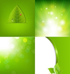 Eco Green Leaf Banners vector image vector image