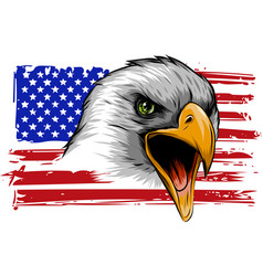 american eagle against usa flag vector image
