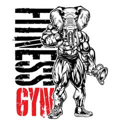Bodybuilder head elephant fitness gym muscle vector