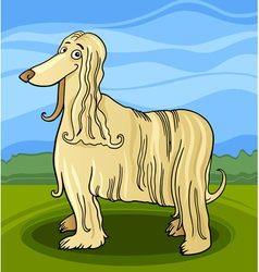 Cartoon afghan hound dog vector