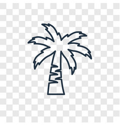 coconut tree concept linear icon isolated on vector image