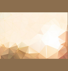 Flesh color abstract background polygon vector