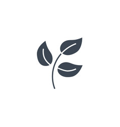 Herbal medicine related glyph icon vector