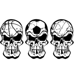 skull ball sports vector image