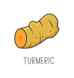 turmeric line cooking vector image