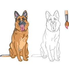 Coloring Book of smiling dog German shepherd vector image vector image