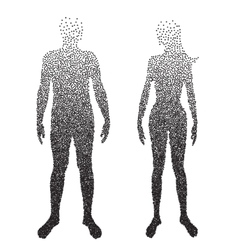 Halftone body Male and female Anatomy designed vector image