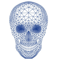 skull with geometric pattern vector image