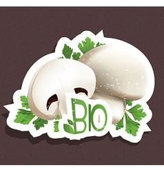 Bio mushroom tag vector image
