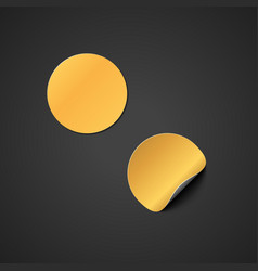 blank gold sticker mockup vector image