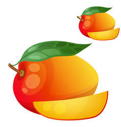 mango cartoon icon isolated on white vector image