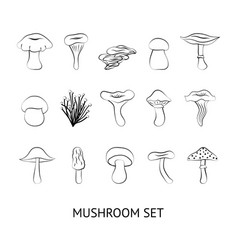 mushrooms outline silhouette vector image