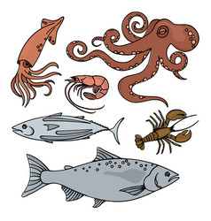 Ocean life sea animals healthy seafood illu vector
