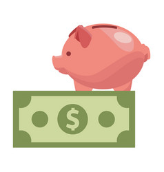 piggy and money vector image