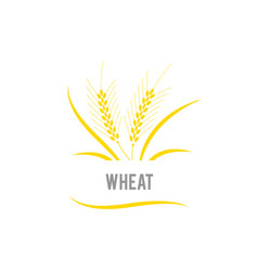 wheat seed food cereal brew agriculture wheat vector image