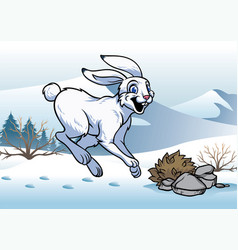 Arctic hare in the winter vector