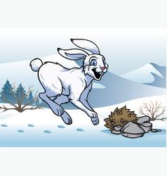 Arctic hare in winter vector